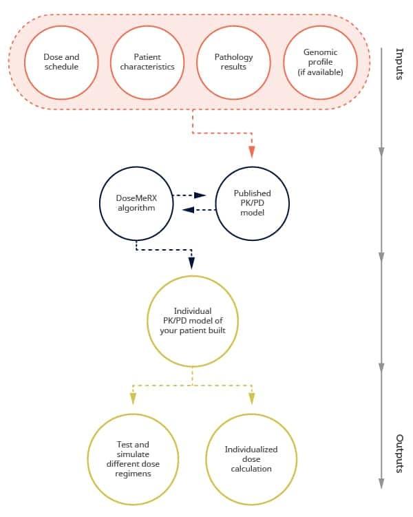 How DoseMeRx simplifies precision dosing